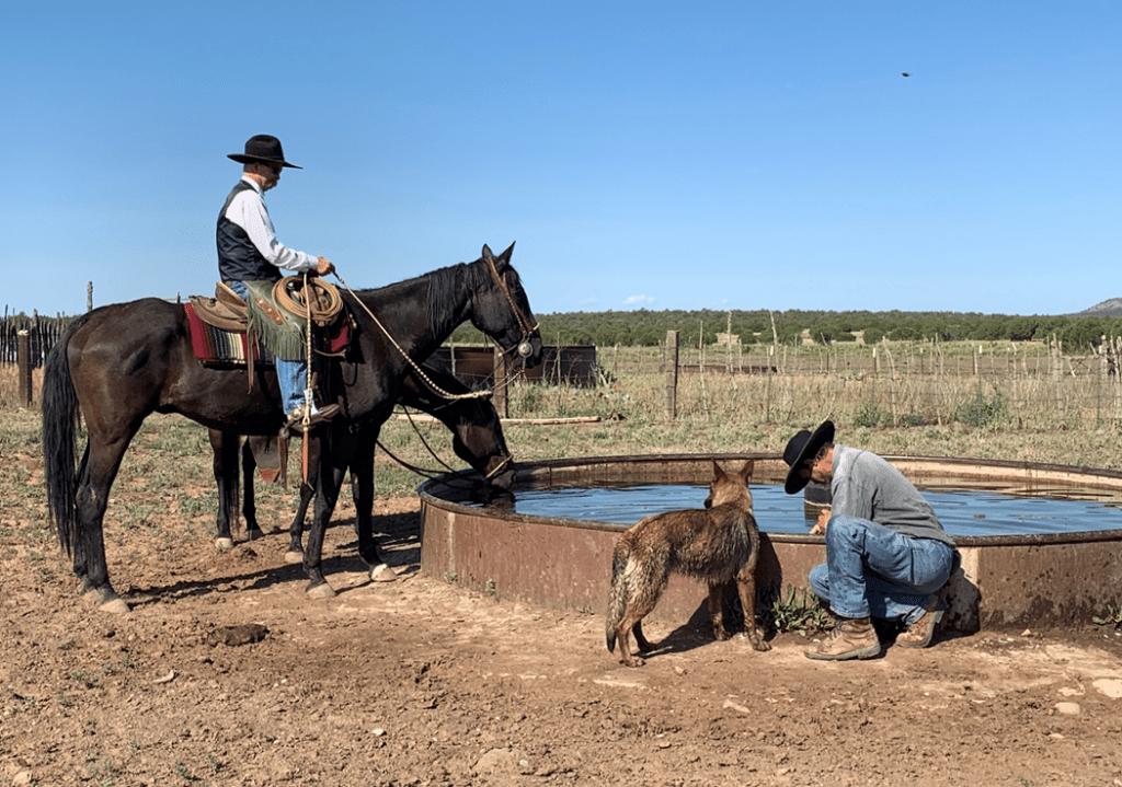 Rural Arizona water system