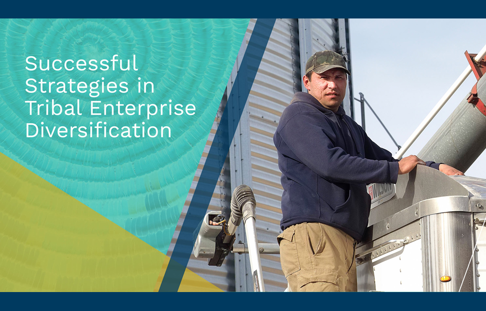 CICD Policy Series: Successful Strategies in Tribal Enterprise Diversification