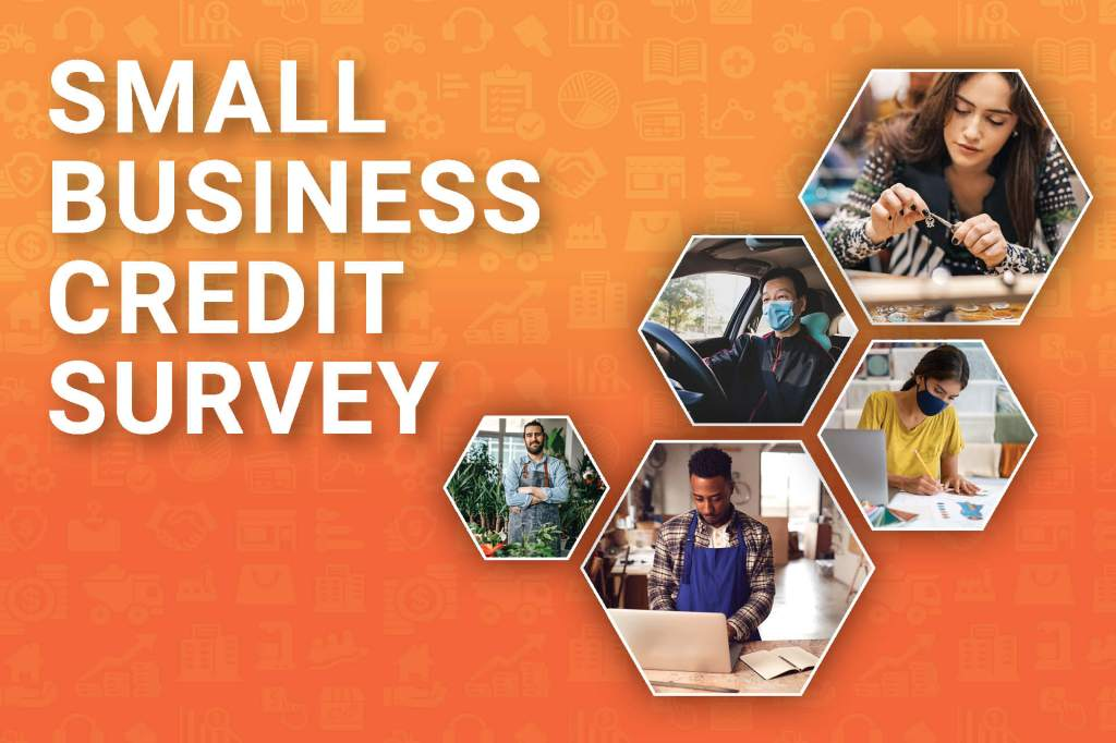 SBCS 2021 Non-employer Firms Survey